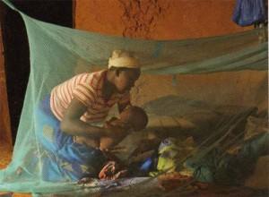 prevent malaria