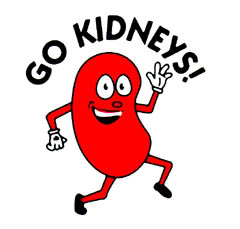 How to take care of your kidneys