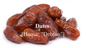 Dates Hausa- -Debino-